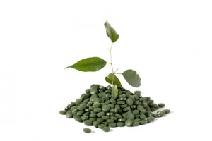 Spirulina - in Pillenform